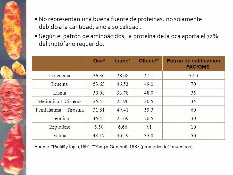 Oca*Isaño*Olluco**Patrón de calificación FAO/OMS Isoleucina36.3628.0841.152.0 Leucina53.6346.5349.070 Lisina59.0833.7848.055 Metionina + Cisterna25.45