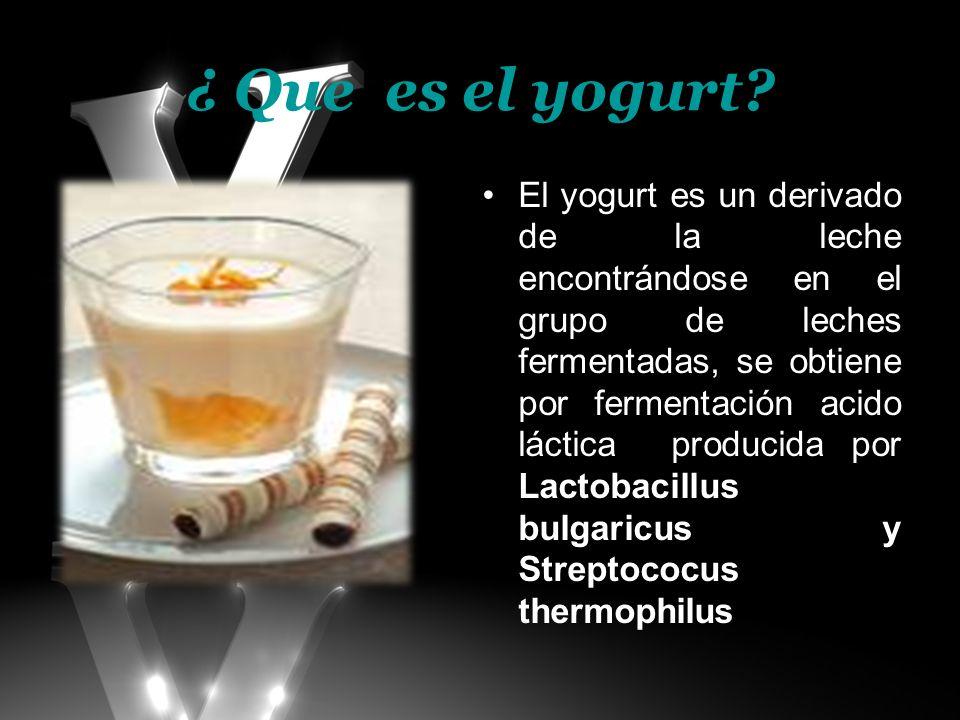 ¿ Que es el yogurt? El yogurt es un derivado de la leche encontrándose en el grupo de leches fermentadas, se obtiene por fermentación acido láctica pr