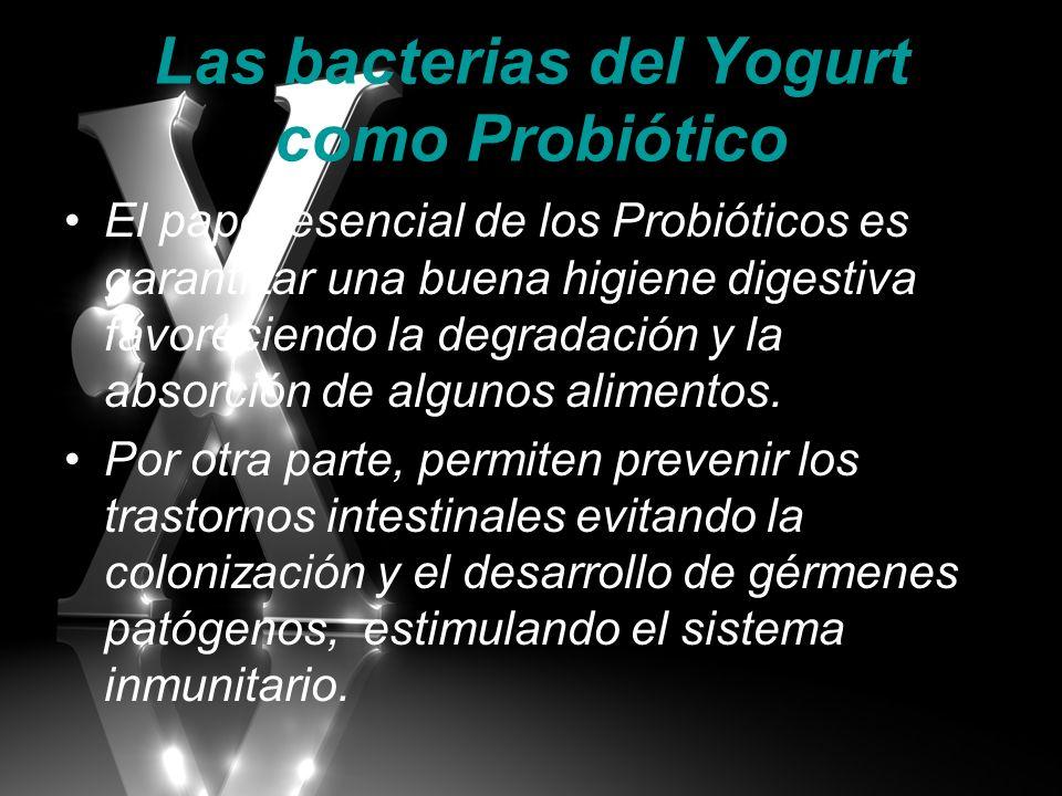 Las bacterias del Yogurt como Probiótico El papel esencial de los Probióticos es garantizar una buena higiene digestiva favoreciendo la degradación y