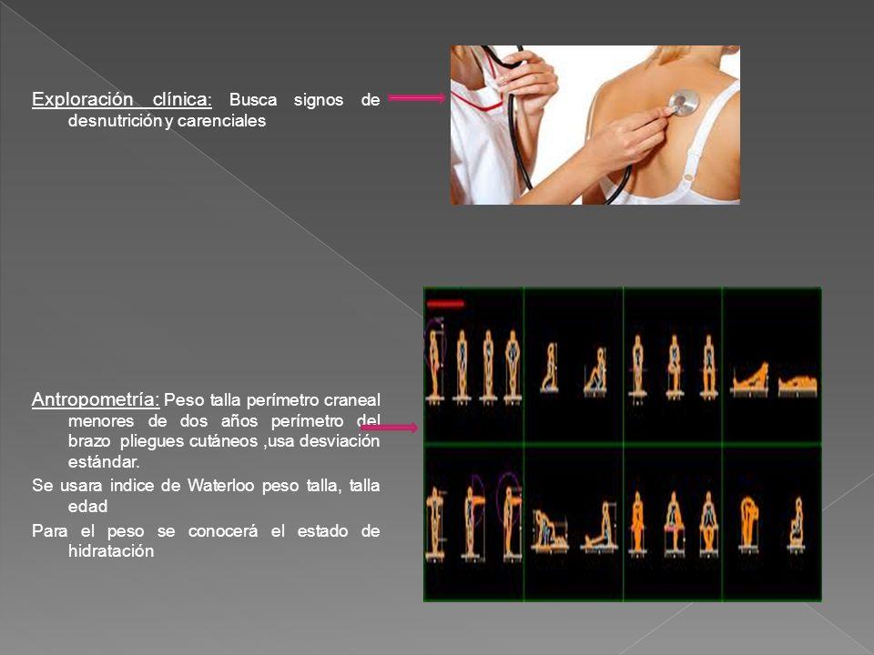 Exploración clínica : Busca signos de desnutrición y carenciales Antropometría: Peso talla perímetro craneal menores de dos años perímetro del brazo p