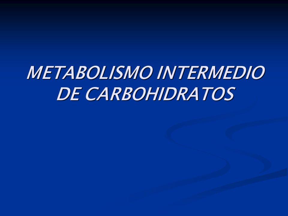 METABOLISMO INTERMEDIO DE CARBOHIDRATOS