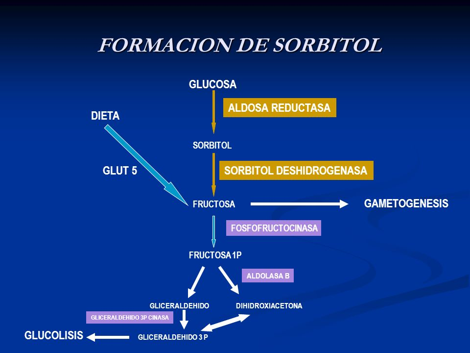 FORMACION DE SORBITOL FRUCTOSA GLUCOSA SORBITOL ALDOSA REDUCTASA SORBITOL DESHIDROGENASA DIETA FRUCTOSA 1P GLICERALDEHIDODIHIDROXIACETONA GLICERALDEHI