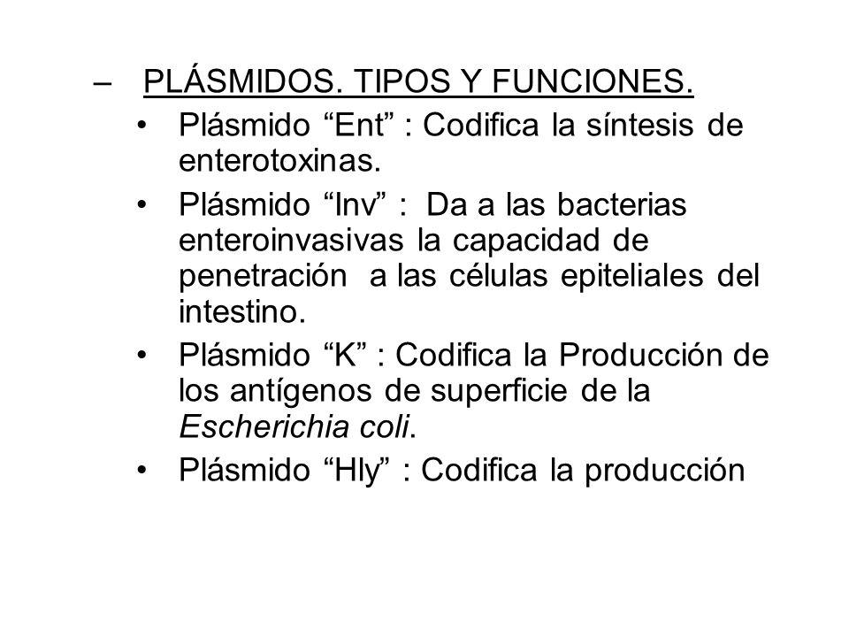 –PLÁSMIDOS.TIPOS Y FUNCIONES. Plásmido Ent : Codifica la síntesis de enterotoxinas.