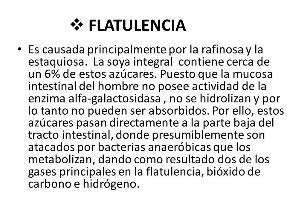 FLATULENCIA Es causada principalmente por la rafinosa y la estaquiosa.