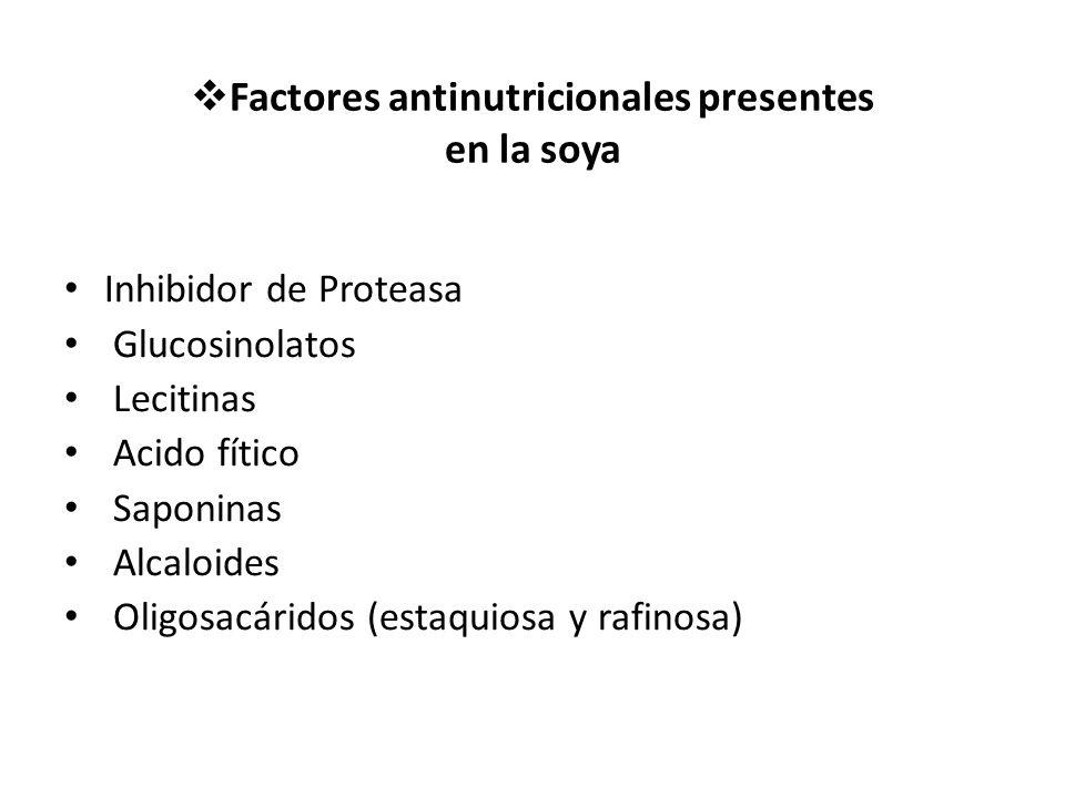 Factores antinutricionales presentes en la soya Inhibidor de Proteasa Glucosinolatos Lecitinas Acido fítico Saponinas Alcaloides Oligosacáridos (estaquiosa y rafinosa)