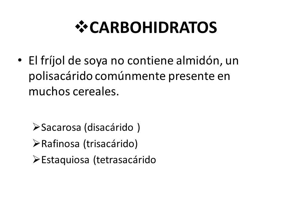 CARBOHIDRATOS El fríjol de soya no contiene almidón, un polisacárido comúnmente presente en muchos cereales.