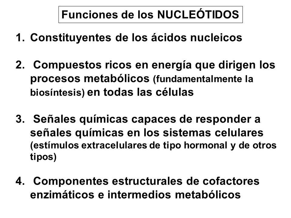 Funciones de los NUCLEÓTIDOS 1.Constituyentes de los ácidos nucleicos 2. Compuestos ricos en energía que dirigen los procesos metabólicos (fundamental
