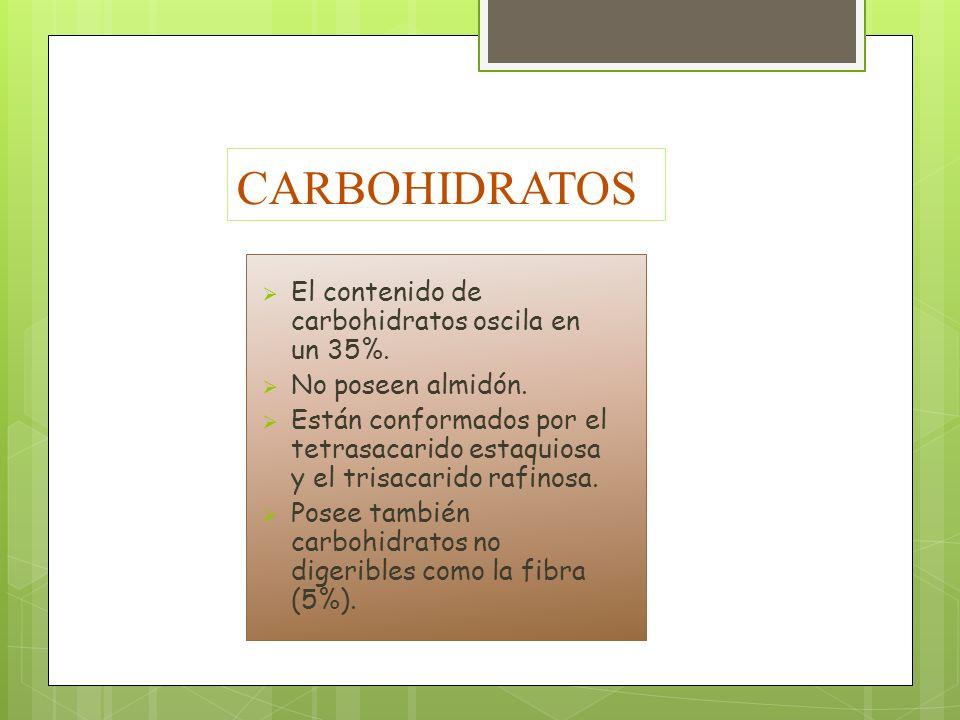 CARBOHIDRATOS El contenido de carbohidratos oscila en un 35%. No poseen almidón. Están conformados por el tetrasacarido estaquiosa y el trisacarido ra