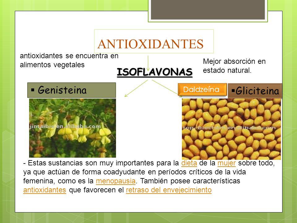 ANTIOXIDANTES ISOFLAVONAS Genisteina Gliciteina antioxidantes se encuentra en alimentos vegetales - Estas sustancias son muy importantes para la dieta