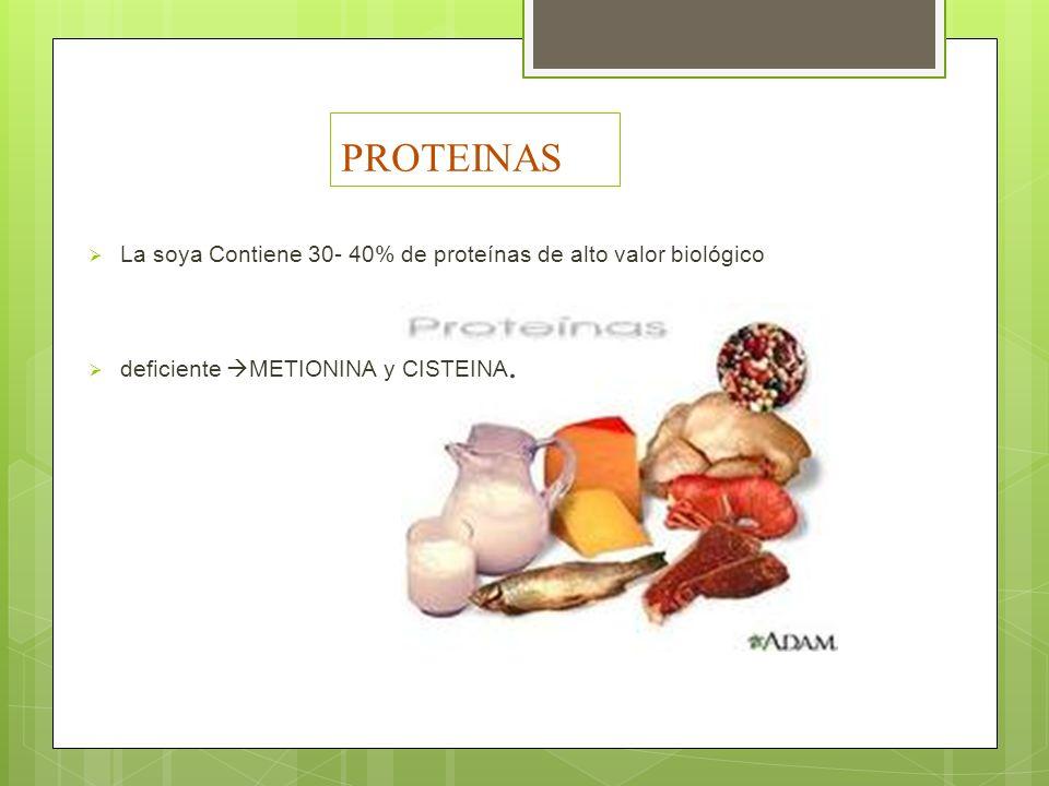 PROTEINAS La soya Contiene 30- 40% de proteínas de alto valor biológico deficiente METIONINA y CISTEINA.
