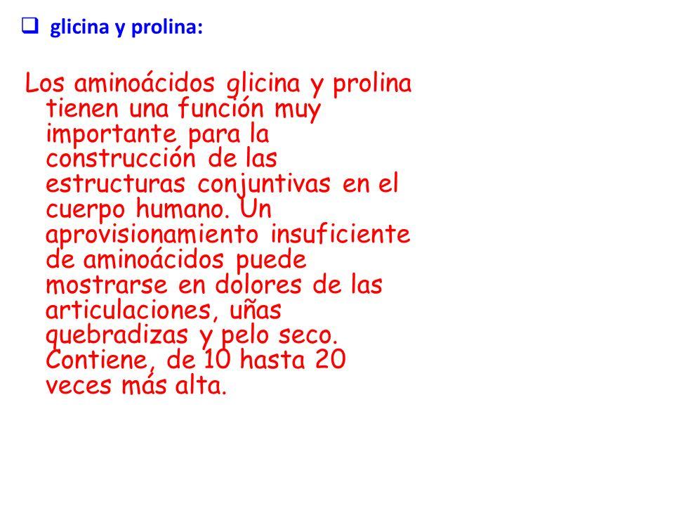 glicina y prolina: Los aminoácidos glicina y prolina tienen una función muy importante para la construcción de las estructuras conjuntivas en el cuerp