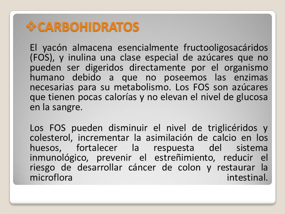 CARBOHIDRATOS CARBOHIDRATOS El yacón almacena esencialmente fructooligosacáridos (FOS), y inulina una clase especial de azúcares que no pueden ser dig