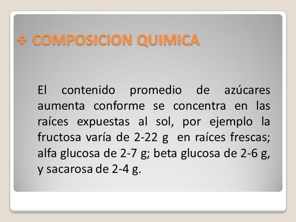 COMPOSICION QUIMICA COMPOSICION QUIMICA El contenido promedio de azúcares aumenta conforme se concentra en las raíces expuestas al sol, por ejemplo la