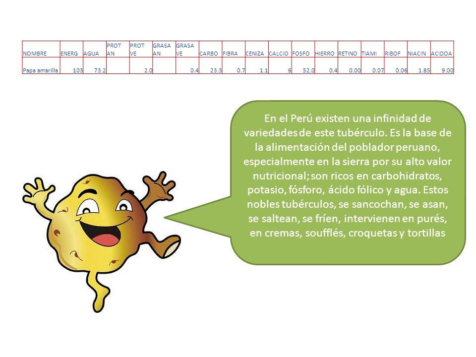 VARIEDADES DE PAPAS EN EL PERU Se estima que en el Perú existen más de tres mil variedades de papas nativas o criollas.