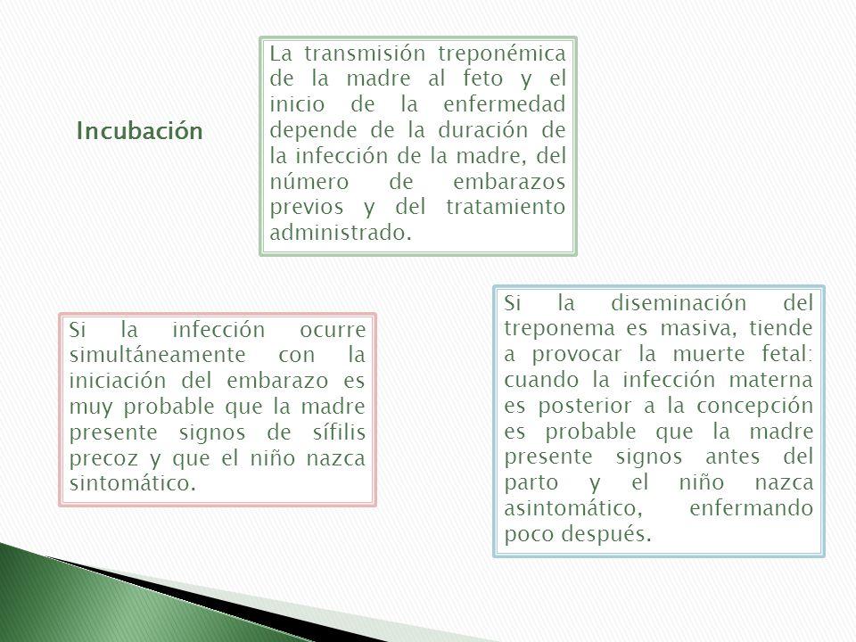 Incubación La transmisión treponémica de la madre al feto y el inicio de la enfermedad depende de la duración de la infección de la madre, del número