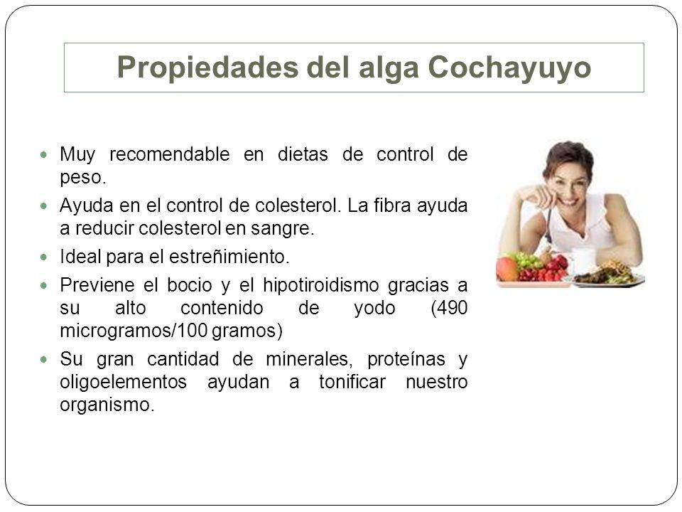 Propiedades del alga Cochayuyo Muy recomendable en dietas de control de peso. Ayuda en el control de colesterol. La fibra ayuda a reducir colesterol e