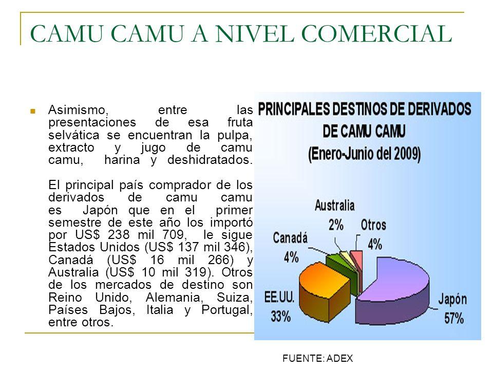CAMU CAMU A NIVEL COMERCIAL Asimismo, entre las presentaciones de esa fruta selvática se encuentran la pulpa, extracto y jugo de camu camu, harina y d