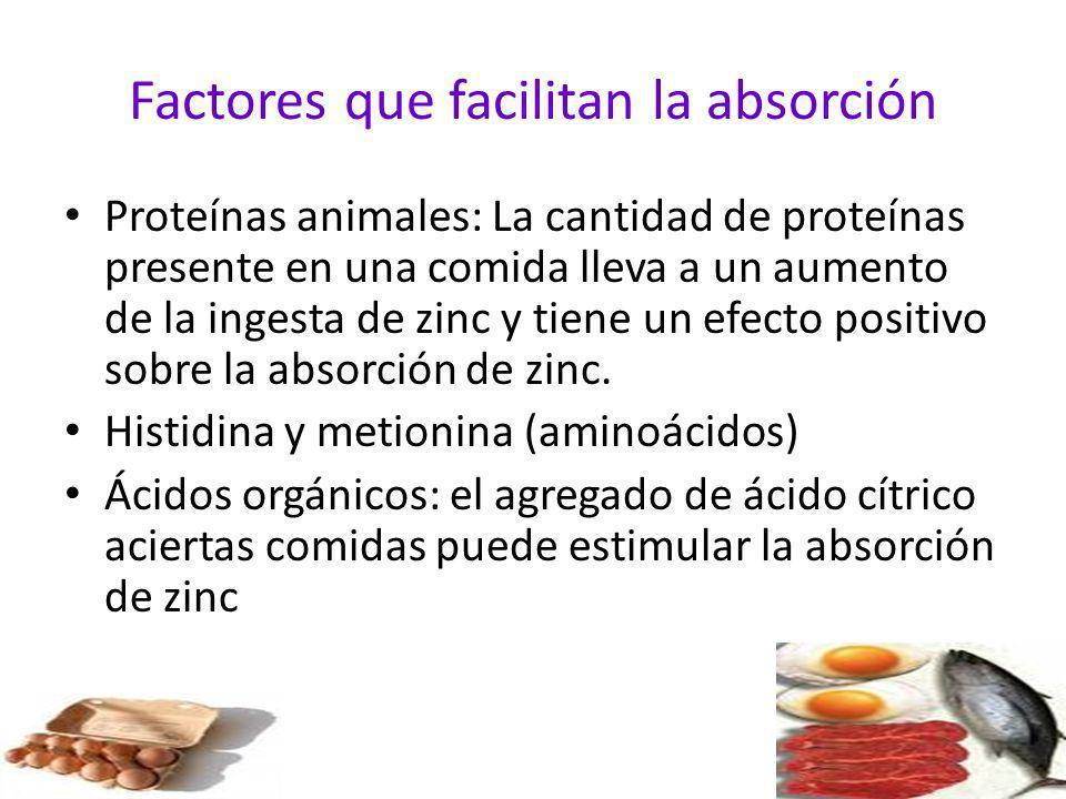 Factores que facilitan la absorción Proteínas animales: La cantidad de proteínas presente en una comida lleva a un aumento de la ingesta de zinc y tie