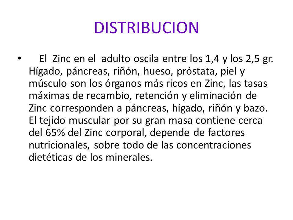 DISTRIBUCION El Zinc en el adulto oscila entre los 1,4 y los 2,5 gr. Hígado, páncreas, riñón, hueso, próstata, piel y músculo son los órganos más rico