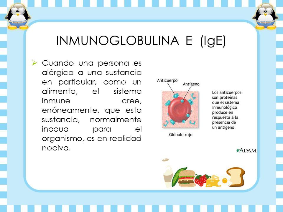 INMUNOGLOBULINA E (IgE) Cuando una persona es alérgica a una sustancia en particular, como un alimento, el sistema inmune cree, erróneamente, que esta