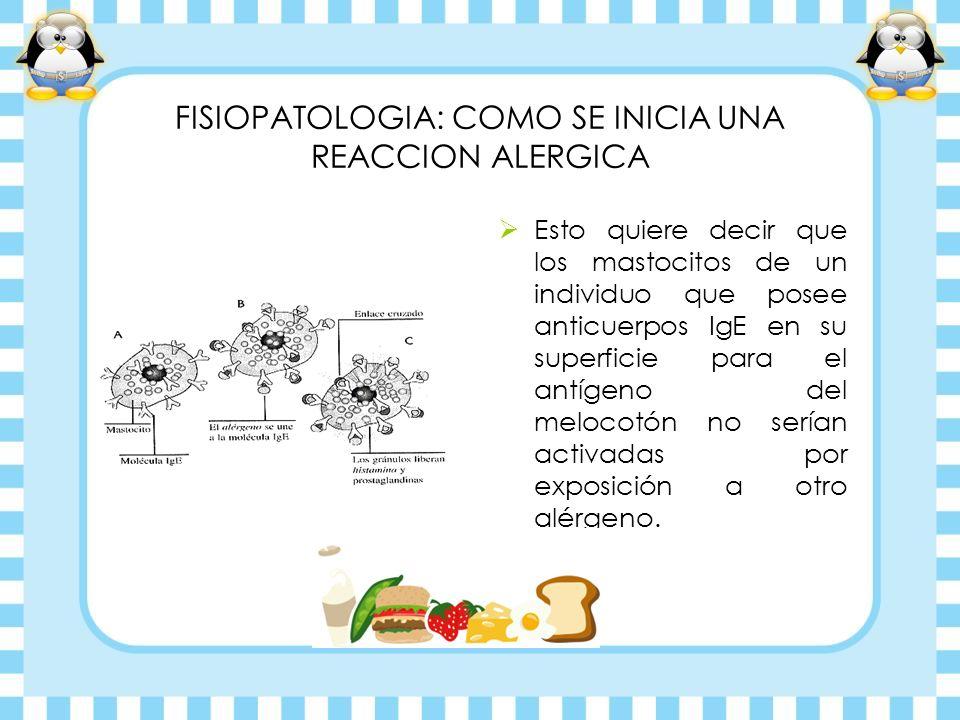 FISIOPATOLOGIA: COMO SE INICIA UNA REACCION ALERGICA Esto quiere decir que los mastocitos de un individuo que posee anticuerpos IgE en su superficie p