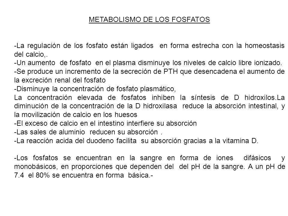METABOLISMO DE LOS FOSFATOS -La regulación de los fosfato están ligados en forma estrecha con la homeostasis del calcio,. -Un aumento de fosfato en el