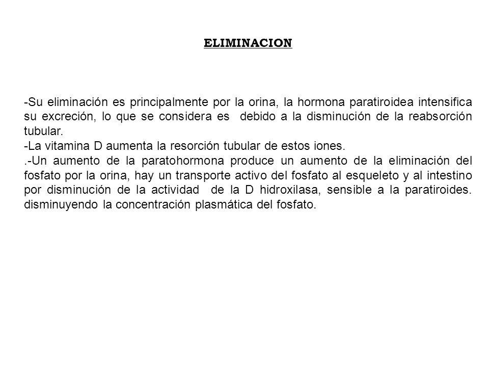 MANEJO RENAL DEL FOSFATO 65%1.1.