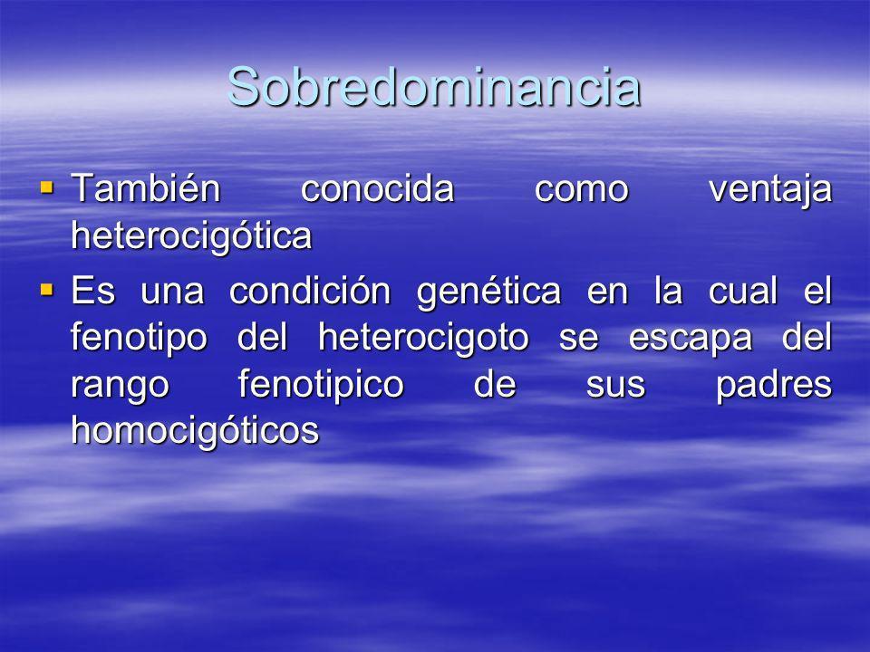 Sobredominancia También conocida como ventaja heterocigótica También conocida como ventaja heterocigótica Es una condición genética en la cual el feno