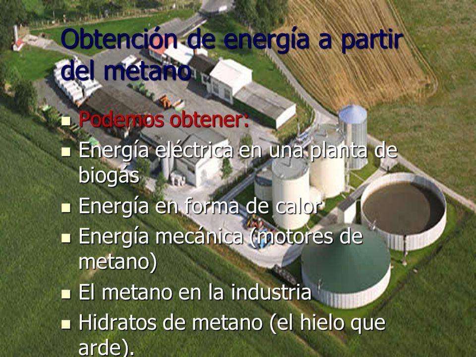 Obtención de energía a partir del metano Podemos obtener: Podemos obtener: Energía eléctrica en una planta de biogás Energía eléctrica en una planta d