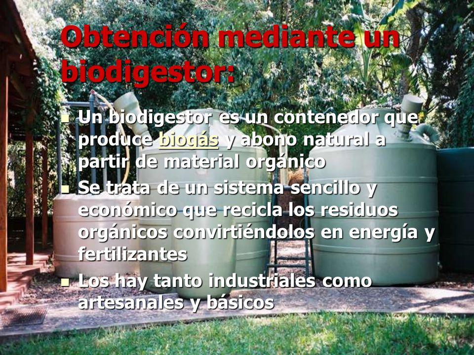 Obtención mediante un biodigestor: Un biodigestor es un contenedor que produce biogás y abono natural a partir de material orgánico Un biodigestor es