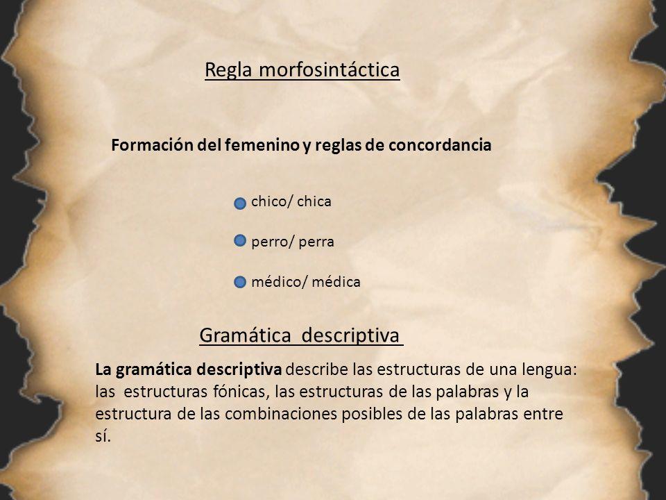 Regla morfosintáctica Formación del femenino y reglas de concordancia chico/ chica perro/ perra médico/ médica Gramática descriptiva La gramática desc