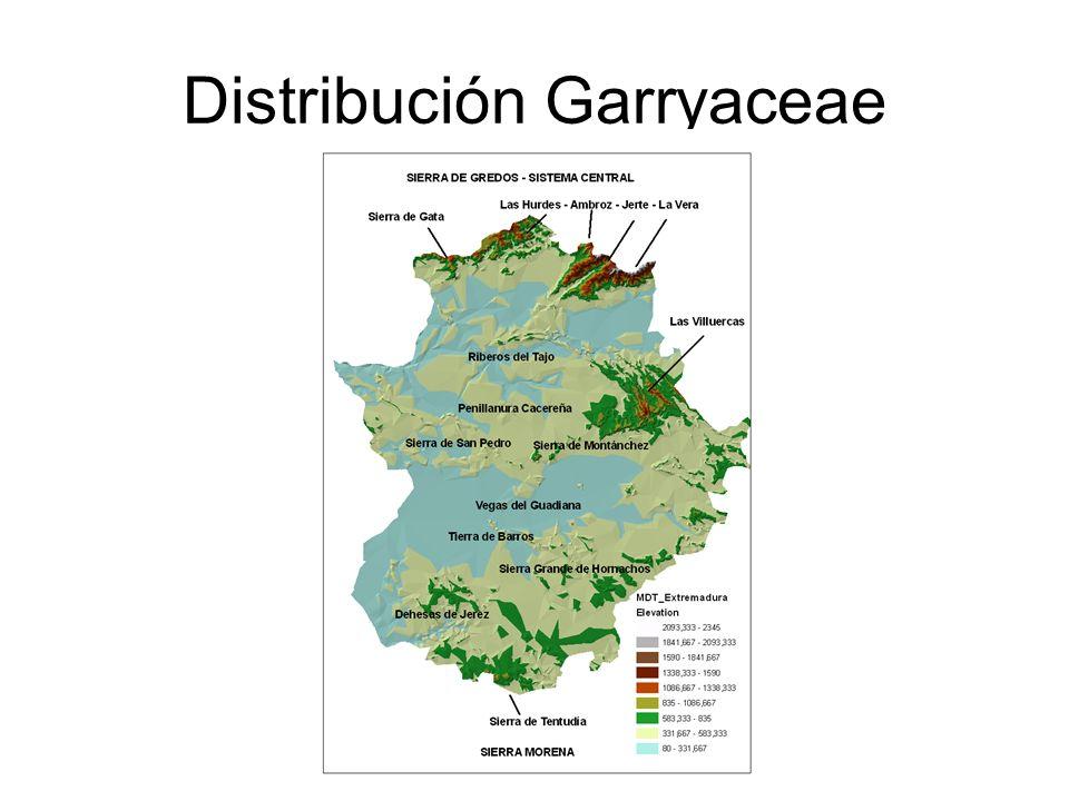 Distribución Garryaceae