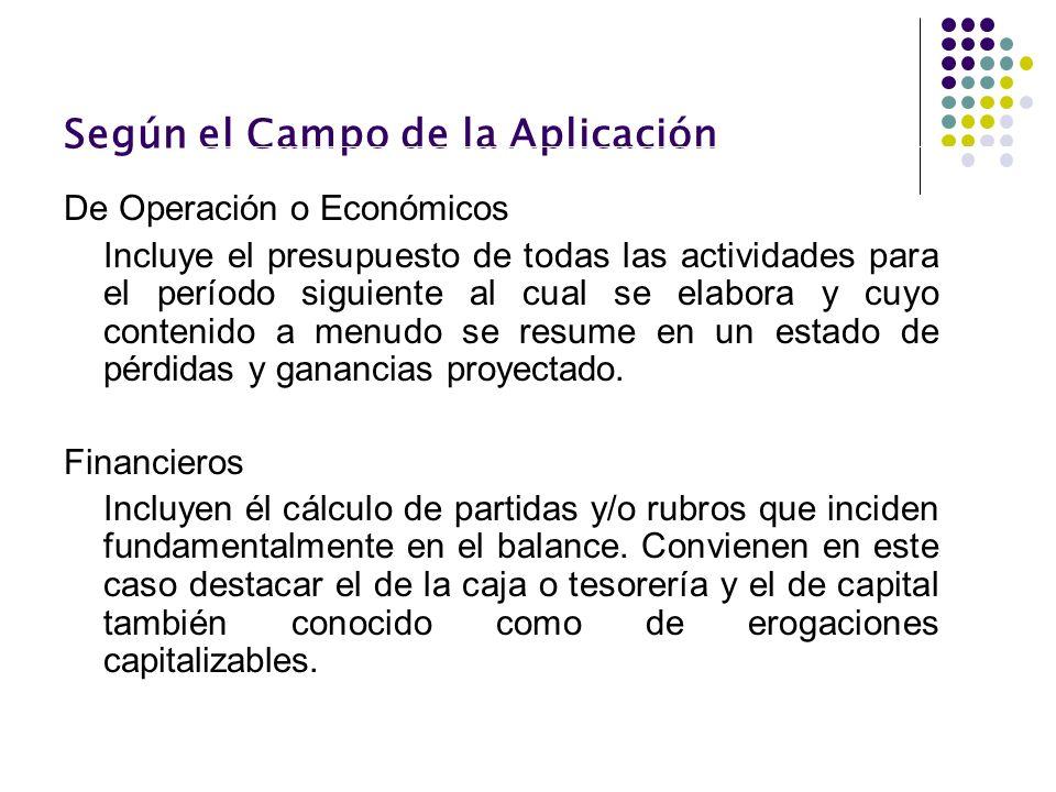 Según el Campo de la Aplicación De Operación o Económicos Incluye el presupuesto de todas las actividades para el período siguiente al cual se elabora