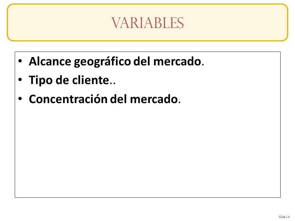 Slide 1-4 Alcance geográfico del mercado. Tipo de cliente.. Concentración del mercado. variables