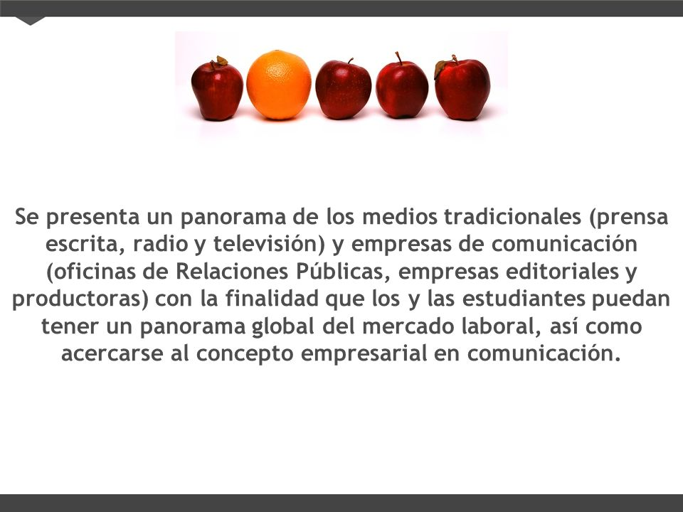 Se presenta un panorama de los medios tradicionales (prensa escrita, radio y televisión) y empresas de comunicación (oficinas de Relaciones Públicas, empresas editoriales y productoras) con la finalidad que los y las estudiantes puedan tener un panorama global del mercado laboral, así como acercarse al concepto empresarial en comunicación.