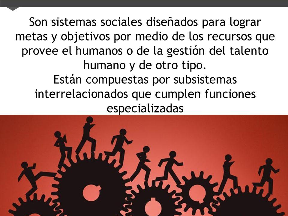 Son sistemas sociales diseñados para lograr metas y objetivos por medio de los recursos que provee el humanos o de la gestión del talento humano y de otro tipo.