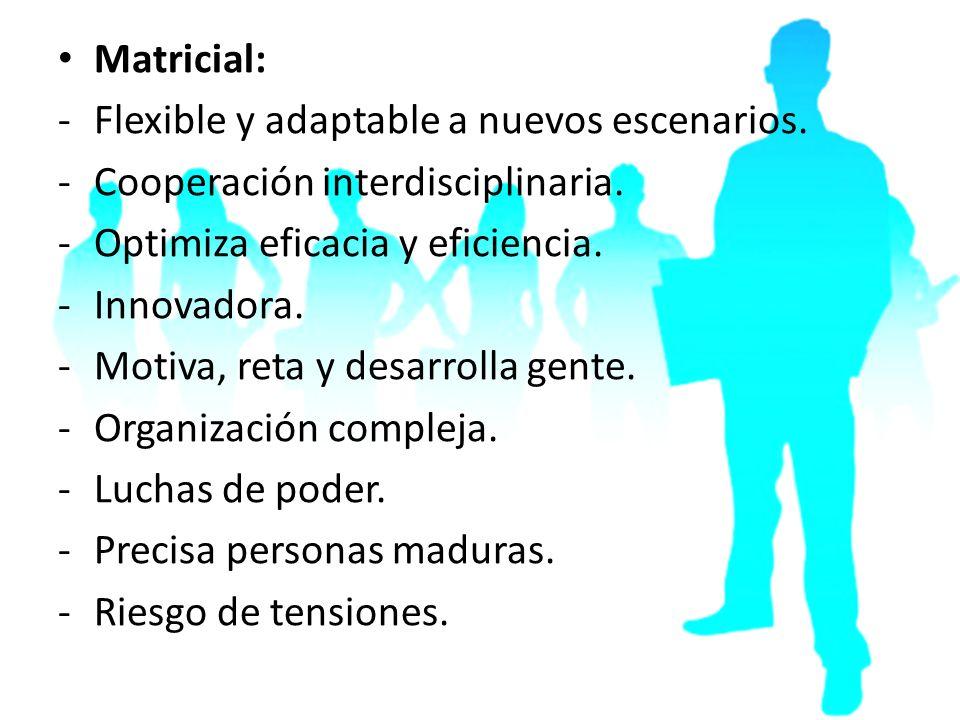 Matricial: -Flexible y adaptable a nuevos escenarios. -Cooperación interdisciplinaria. -Optimiza eficacia y eficiencia. -Innovadora. -Motiva, reta y d