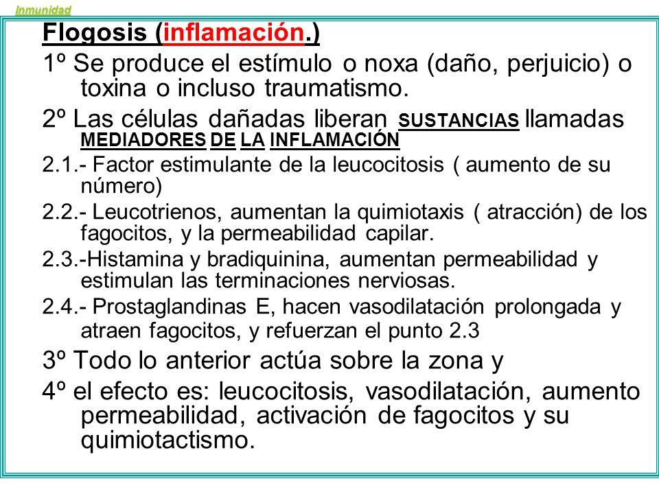 Inmunidad Flogosis (inflamación.) 1.Dolor 2.Rubor 3.Tumor 4.Calor (impotencia funcional)