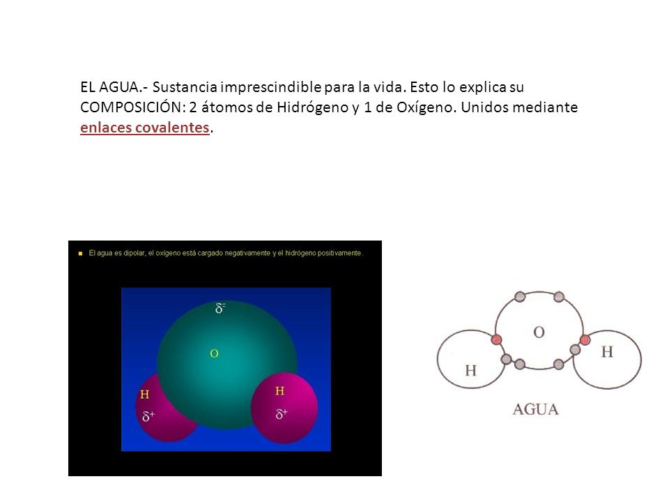 EL AGUA.- Sustancia imprescindible para la vida. Esto lo explica su COMPOSICIÓN: 2 átomos de Hidrógeno y 1 de Oxígeno. Unidos mediante enlaces covalen