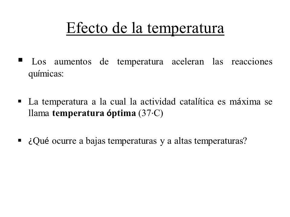 Efecto de la temperatura Los aumentos de temperatura aceleran las reacciones qu í micas: La temperatura a la cual la actividad catal í tica es m á xim