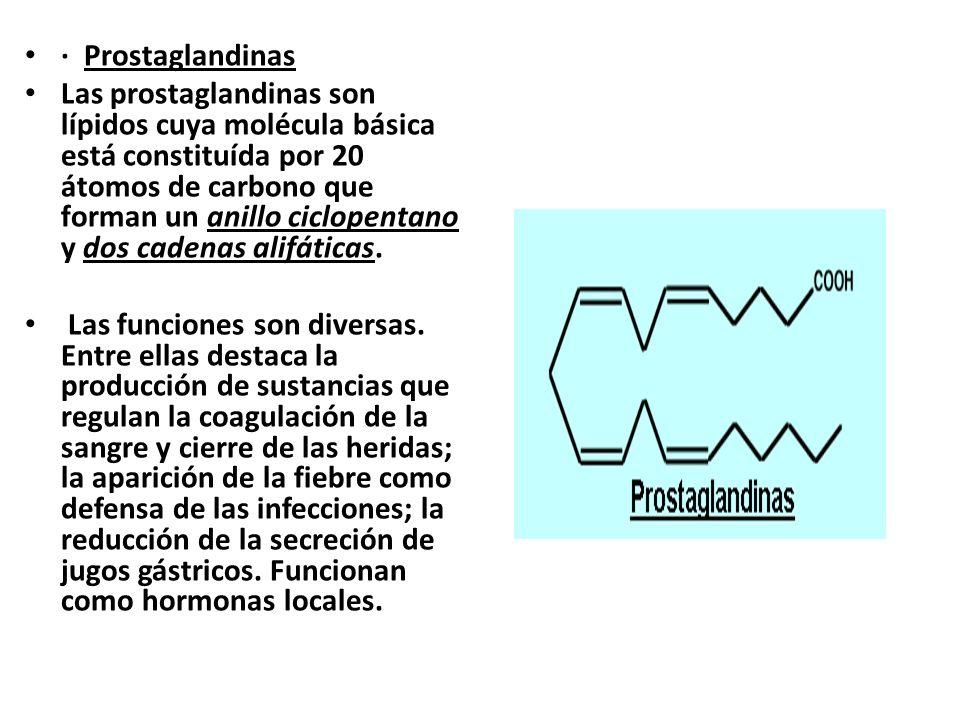 · Prostaglandinas Las prostaglandinas son lípidos cuya molécula básica está constituída por 20 átomos de carbono que forman un anillo ciclopentano y d