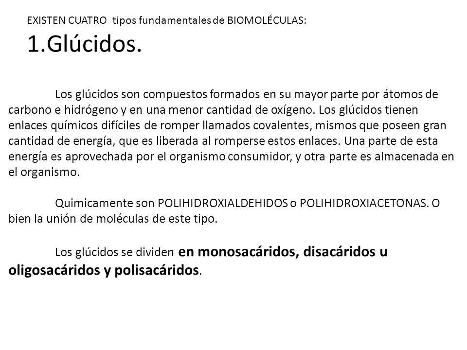 PROPIEDADES DE LOS LIPIDOS Solubilidad.