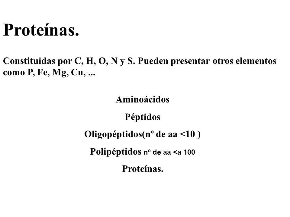Proteínas. Constituidas por C, H, O, N y S. Pueden presentar otros elementos como P, Fe, Mg, Cu,... Aminoácidos Péptidos Oligopéptidos(nº de aa <10 )