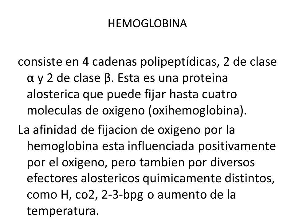HEMOGLOBINA consiste en 4 cadenas polipeptídicas, 2 de clase α y 2 de clase β. Esta es una proteina alosterica que puede fijar hasta cuatro moleculas