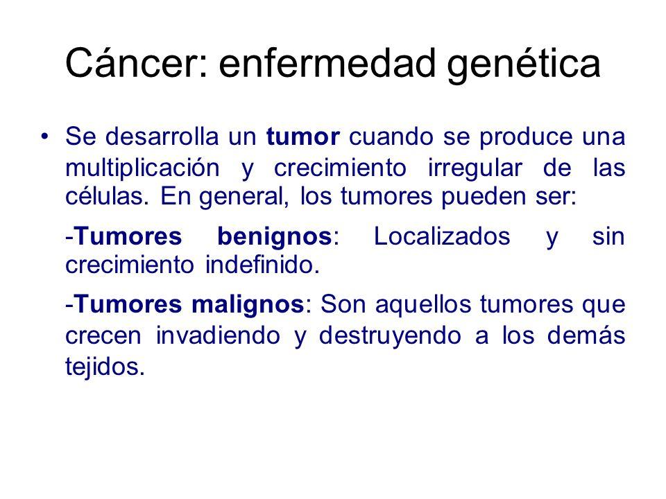 Cáncer: enfermedad genética Se desarrolla un tumor cuando se produce una multiplicación y crecimiento irregular de las células. En general, los tumore