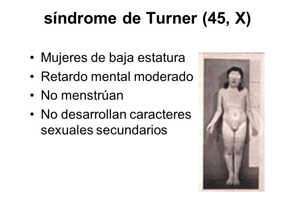 síndrome de Turner (45, X) Mujeres de baja estatura Retardo mental moderado No menstrúan No desarrollan caracteres sexuales secundarios