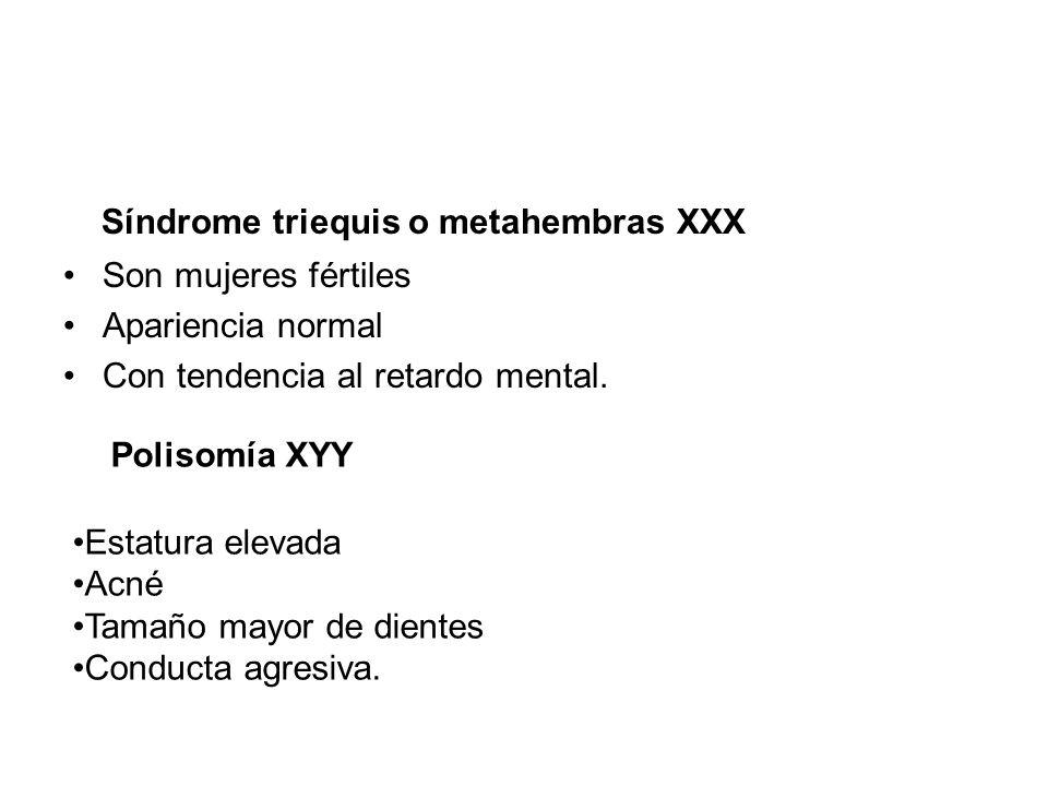 Síndrome triequis o metahembras XXX Son mujeres fértiles Apariencia normal Con tendencia al retardo mental. Polisomía XYY Estatura elevada Acné Tamaño
