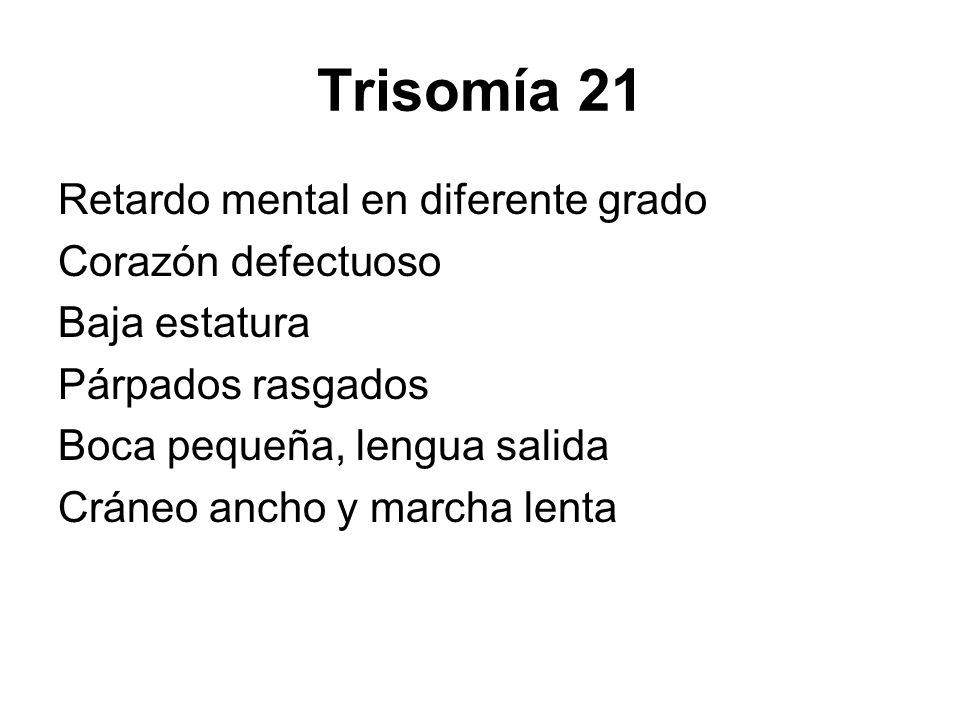 Trisomía 21 Retardo mental en diferente grado Corazón defectuoso Baja estatura Párpados rasgados Boca pequeña, lengua salida Cráneo ancho y marcha len