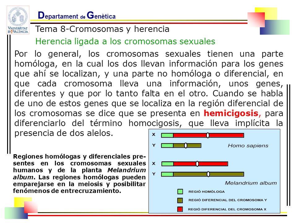 D epartament de G enètica Tema 8-Cromosomas y herencia Herencia ligada a los cromosomas sexuales Por lo general, los cromosomas sexuales tienen una pa