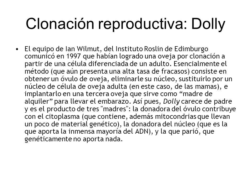 Clonación reproductiva: Dolly El equipo de Ian Wilmut, del Instituto Roslin de Edimburgo comunicó en 1997 que habían logrado una oveja por clonación a